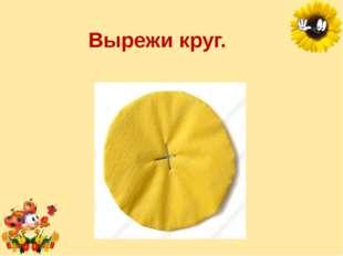 Вырежи круг. Лукяненко Элеонора Анатольевна, учитель начальных классо МКОУ СО