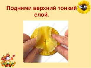 Подними верхний тонкий слой. Лукяненко Элеонора Анатольевна, учитель начальны