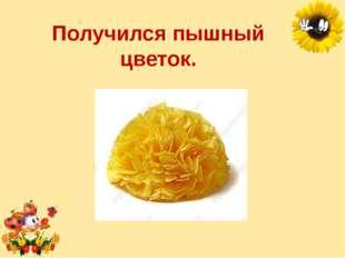 Получился пышный цветок. Лукяненко Элеонора Анатольевна, учитель начальных кл