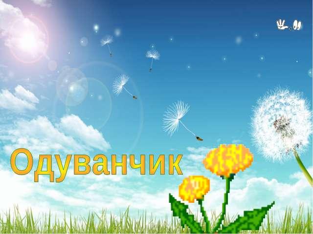 На лужайке, где кусты, Ярко-жёлтые цветы С солнышком проснулись, Сладко потян...