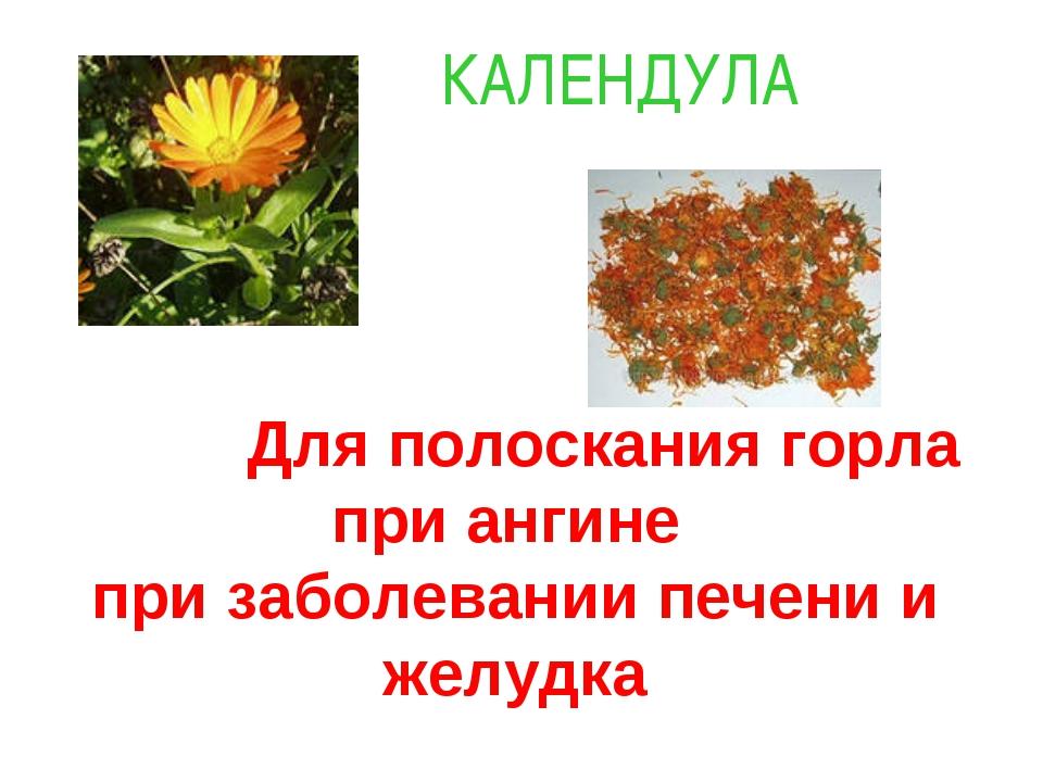 Для полоскания горла при ангине при заболевании печени и желудка КАЛЕНДУЛА