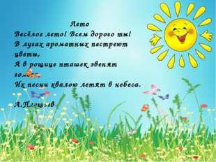 Лето Весёлое лето! Всем дорого ты! В лугах ароматных пестреют цветы, А в рощ
