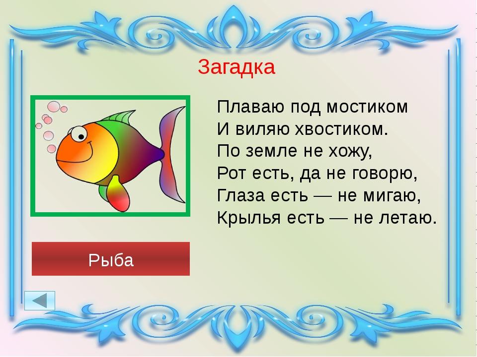 загадки о рыбах в картинках течение десятков