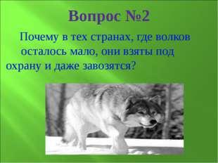Почему в тех странах, где волков осталось мало, они взяты под охрану и даже