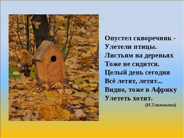 Опустел скворечник - Улетели птицы. Листьям на деревьях Тоже не сидится. Цел...