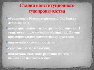 обращение в Конституционный Суд (пакет документов); предварительное рассмотре