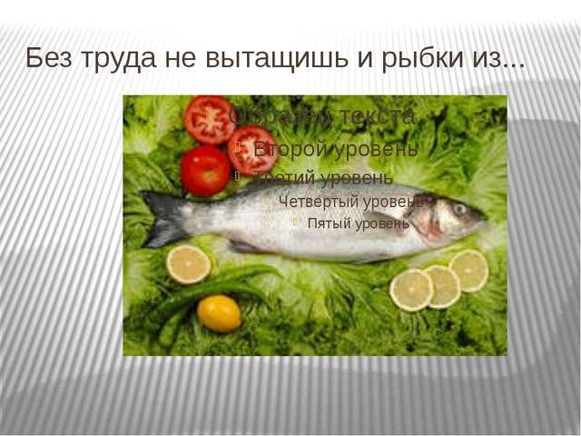 Без труда не вытащишь и рыбки из...