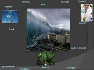 oxygen tsunami heat drought scientist hurricane greenhouse carbon dioxide flo