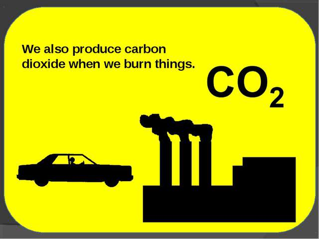 We also produce carbon dioxide when we burn things.