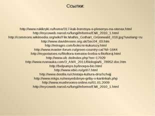 Ссылки: http://www.rukikryki.ru/home/317-kak-borotsya-s-plesenyu-na-stenax.ht