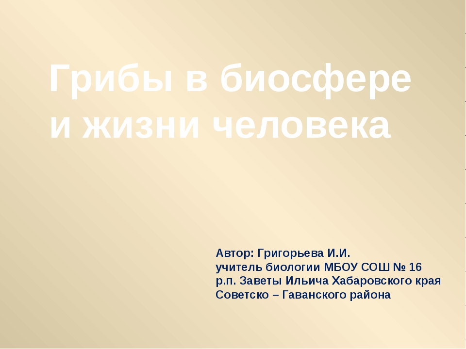 Грибы в биосфере и жизни человека Автор: Григорьева И.И. учитель биологии МБО...