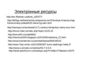 Электронные ресурсы http://ew.35photo.ru/photo_200377/ http://900igr.net/kart