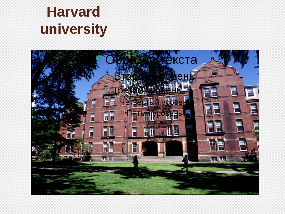 Harvard university nivwer