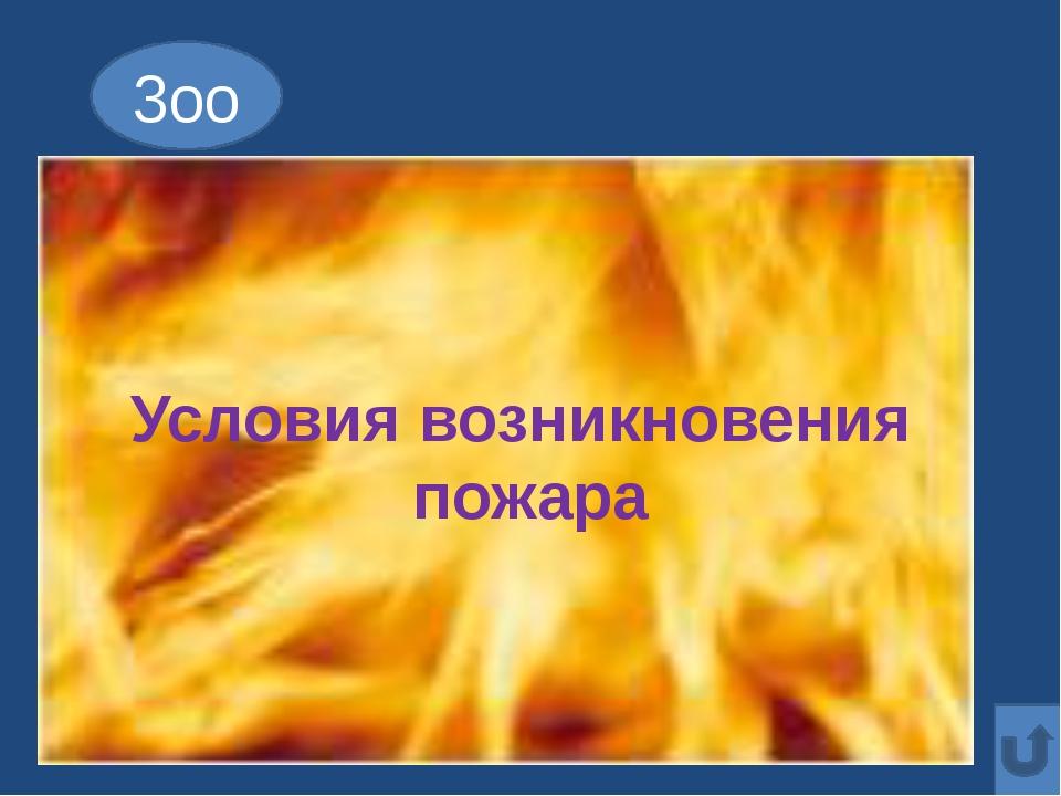 8оо Если младшие сестрички Зажигают дома спички, Что ты должен предпринять?...