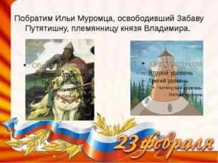 Побратим Ильи Муромца, освободивший Забаву Путятишну, племянницу князя Владим