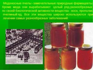 Медоносные пчелы -замечательные природные фармацевты. Кроме меда они вырабат