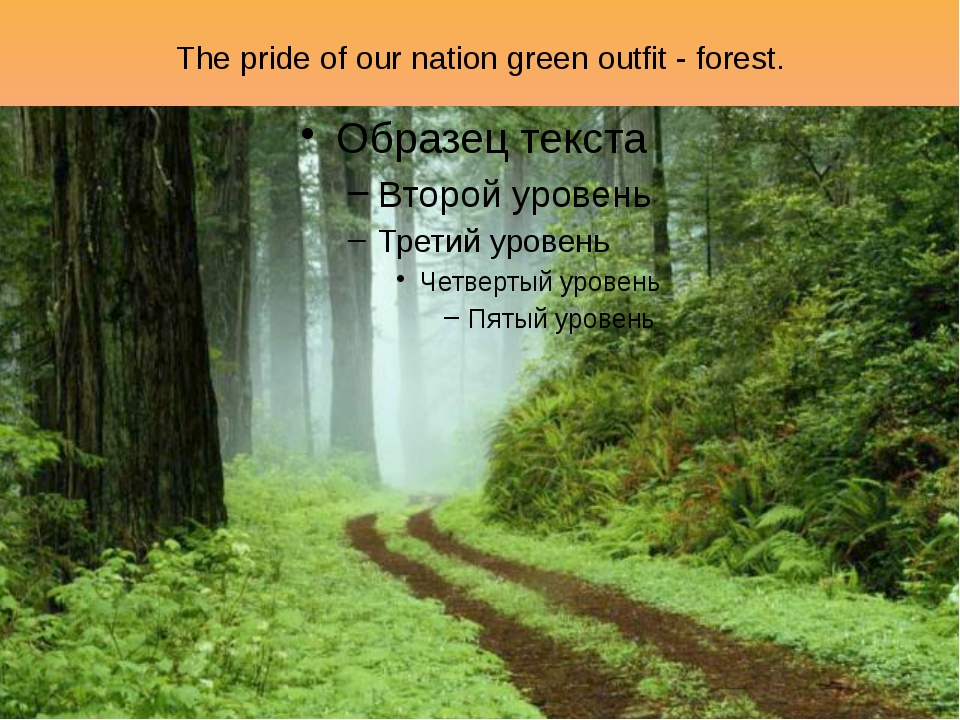 The pride of our nation green outfit - forest.