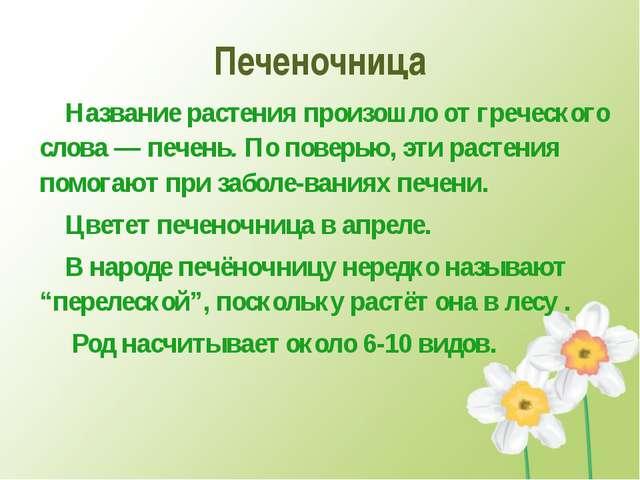 Печеночница Названиерастения произошло от греческого слова —печень.По пове...