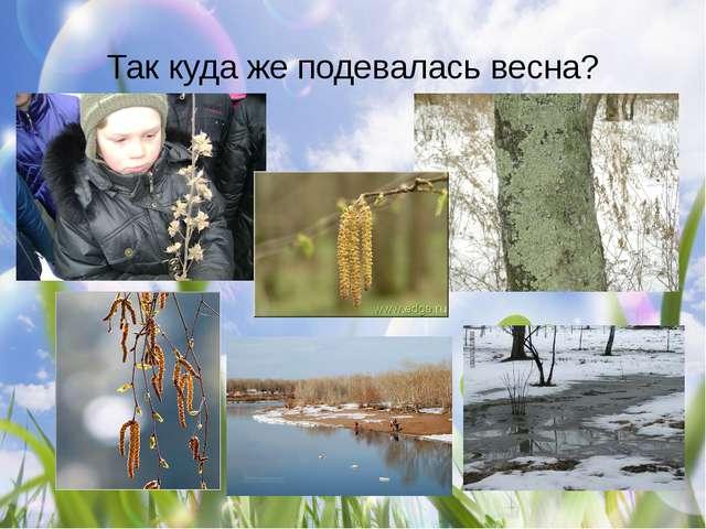 Так куда же подевалась весна?