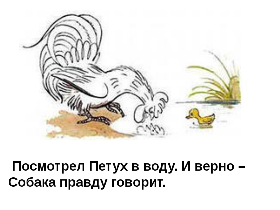 Посмотрел Петух в воду. И верно – Собака правду говорит.