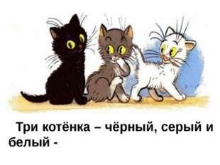 Три котёнка – чёрный, серый и белый -