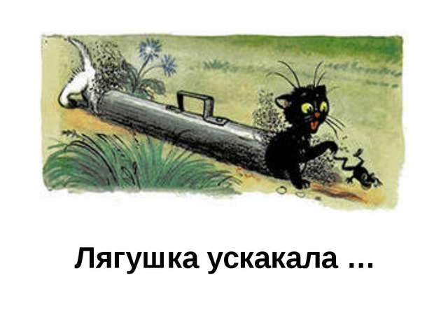 Лягушка ускакала …