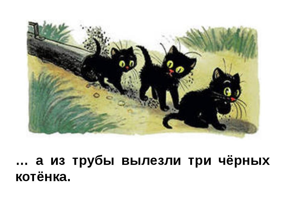 … а из трубы вылезли три чёрных котёнка.