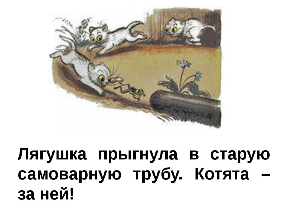 Лягушка прыгнула в старую самоварную трубу. Котята – за ней!