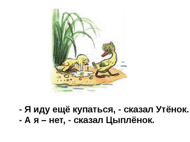 - Я иду ещё купаться, - сказал Утёнок. - А я – нет, - сказал Цыплёнок.