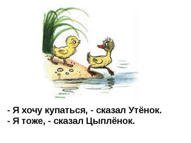 - Я хочу купаться, - сказал Утёнок. - Я тоже, - сказал Цыплёнок.