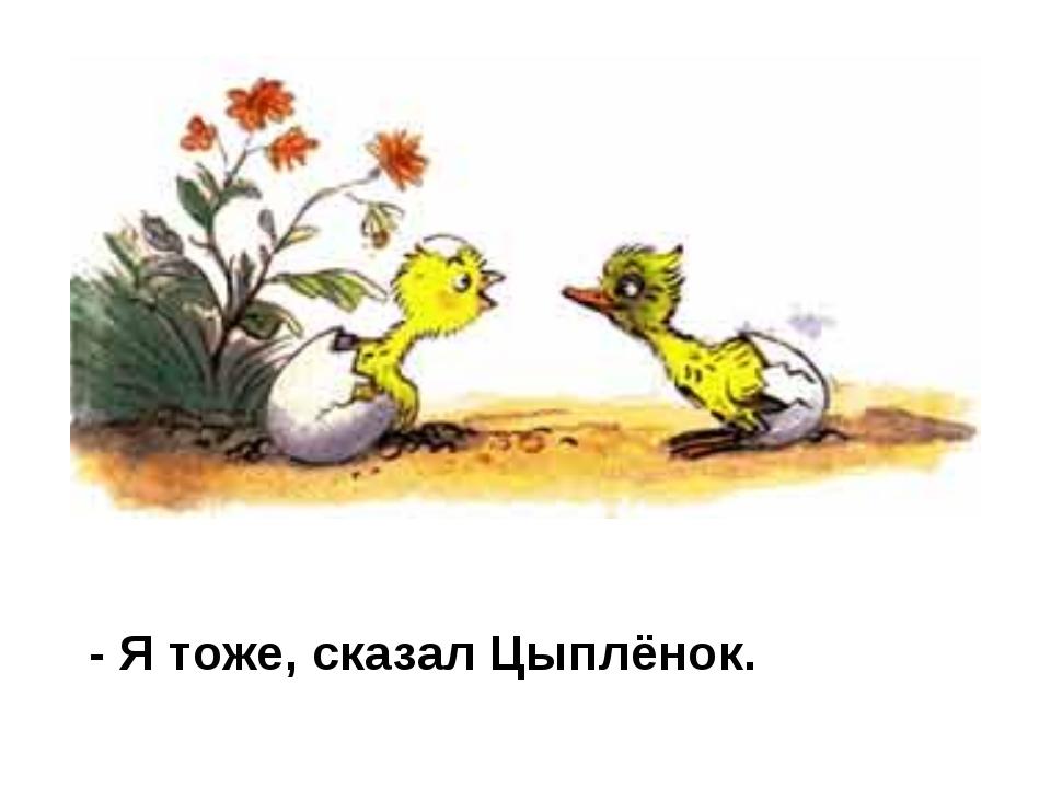 - Я тоже, сказал Цыплёнок.