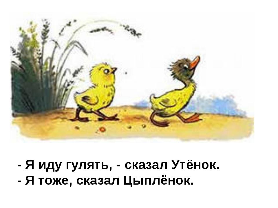 - Я иду гулять, - сказал Утёнок. - Я тоже, сказал Цыплёнок.