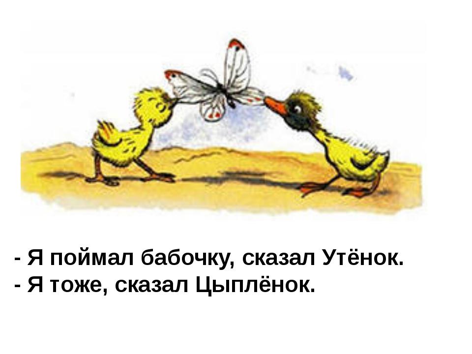 - Я поймал бабочку, сказал Утёнок. - Я тоже, сказал Цыплёнок.