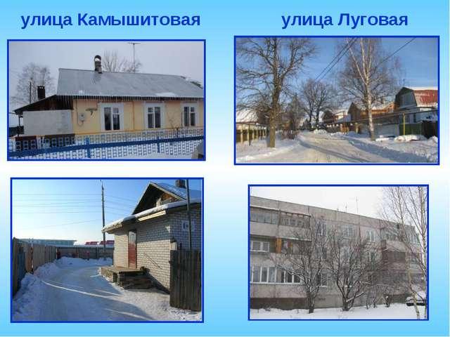 улица Камышитовая улица Луговая