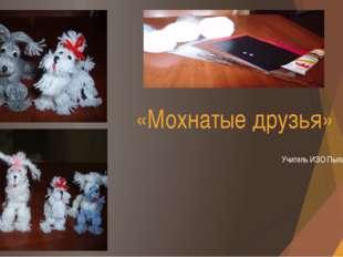 «Мохнатые друзья» Учитель ИЗО Пылаева Н.Г. 2014 год