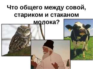 Что общего между совой, стариком и стаканом молока?