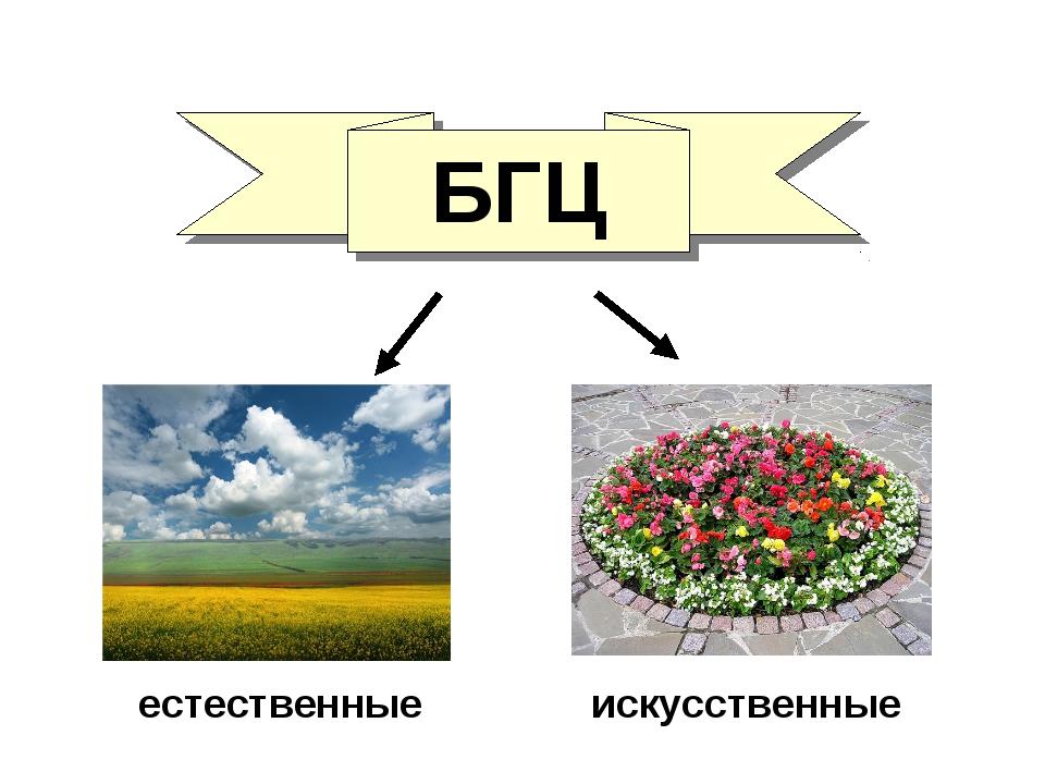 БГЦ естественные искусственные