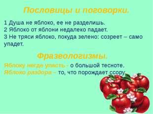 Пословицы и поговорки. 1 Душа не яблоко, ее не разделишь. 2 Яблоко от яблони
