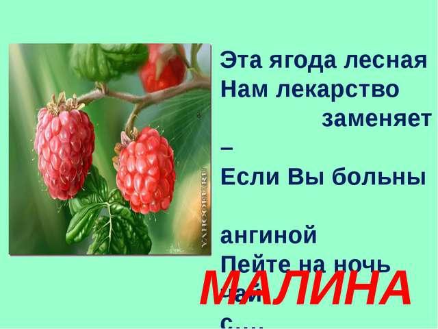 Эта ягода лесная Нам лекарство заменяет – Если Вы больны ангиной Пейте на ноч...