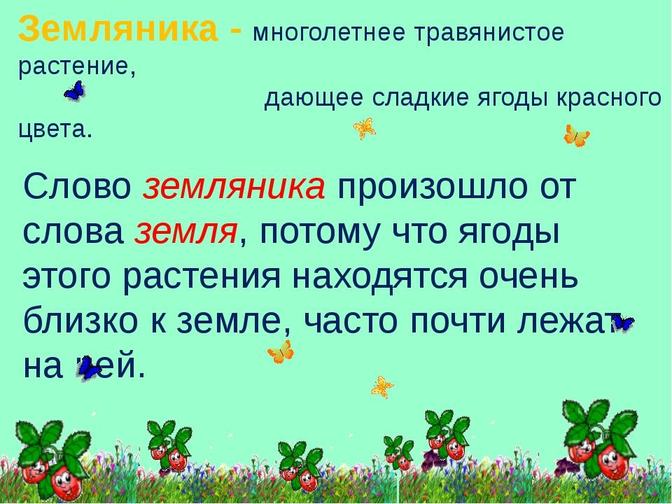 Земляника - многолетнее травянистое растение, дающее сладкие ягоды красного ц...