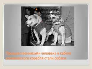 Предшественниками человека в кабине космического корабля стали собаки.