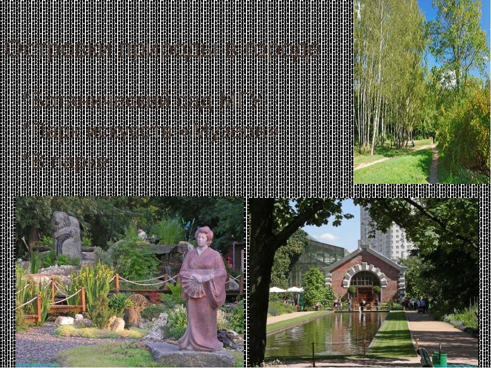 Островки природы в городе *Ботанический сад МГУ *Парк искусств «Музеон» *В па...