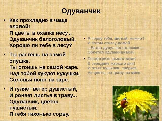 Добро пожаловать на официальный сайт ТГМУ Тверской государственный