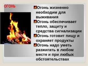 ОГОНЬ Огонь жизненно необходим для выживания Огонь обеспечивает тепло, защиту
