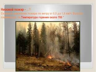Низовой пожар - ...? Скорость движения пожара по ветру от 0,5 до 1,5 км/ч. Вы