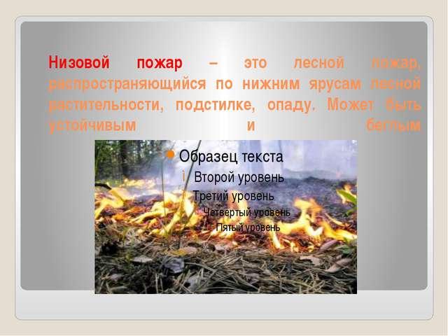 Низовой пожар – это лесной пожар, распространяющийся по нижним ярусам лесной...