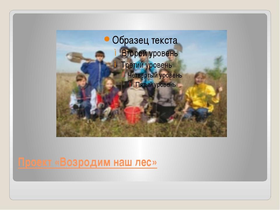 Проект «Возродим наш лес»