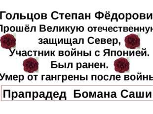 Гольцов Степан Фёдорович Прошёл Великую отечественную, защищал Север, Участн