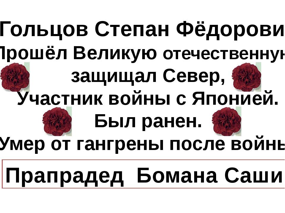 Гольцов Степан Фёдорович Прошёл Великую отечественную, защищал Север, Участн...