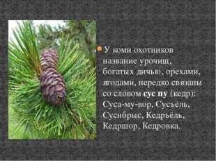 У коми охотников название урочищ, богатых дичью, орехами, ягодами, нередко с